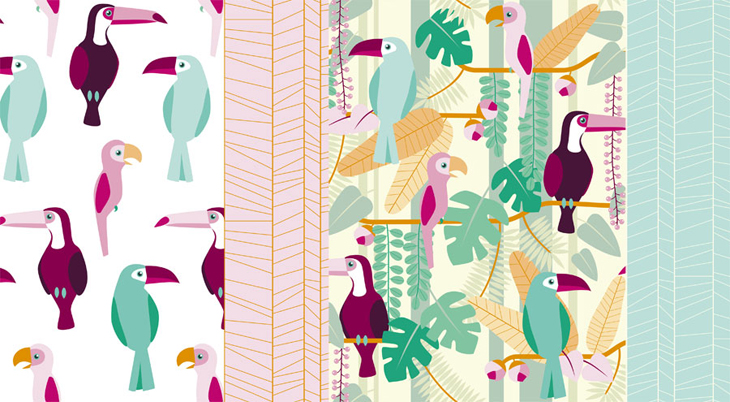 Rainforest birds collection